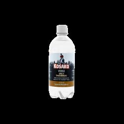 TAMARINDO SPICY PET 600 ml