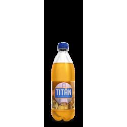 TITAN PIÑA PET 600 ml